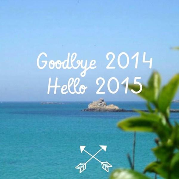 Goodbye 2014, Hello 2015 par Caro Dels