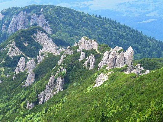 Widok Rzędowych Skał z południowego stoku Siwego Wierchu.