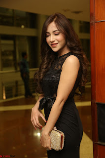 Angela Krislinzki in Transparent Black Gown at Rogue Movie Teaser Launch 1st March 2017 088.JPG
