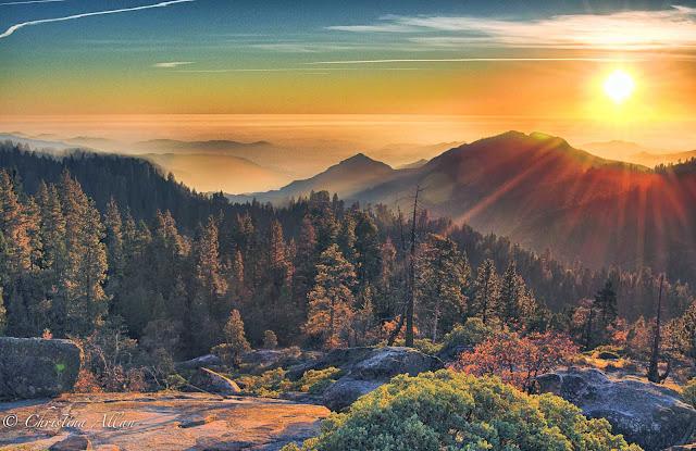 Sequoia National Park Earth Blog