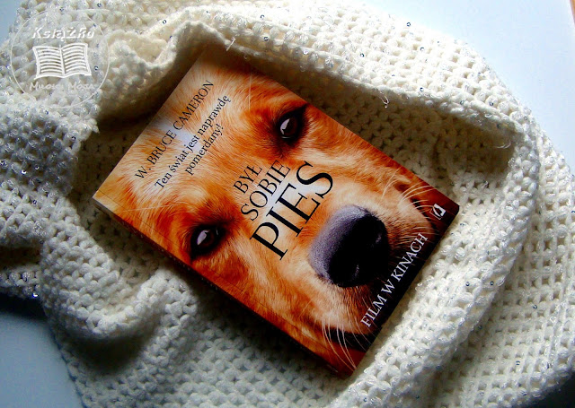 pies, Był sobie pies film, był sobie pies książka, zwiastun filmu Był sobie pies, Pies, ksiażka o psie, pies na okładce, rasa psa, jaki pies, przyjazny pies, dobry pies, jak znaleźć psa, idealny przyjaciel, pies przyjaciel człowieka, ujmująca ksiązka o psie, życie po życiu, sens życia, jak żyć, życie psa, dień psa, miłość psa do chłopca, śmierć psa, szczeniak, kochamy psy, pies, zwierzęta, pomerdany świat, psie życie, pieskie sprawy, psu na budę.