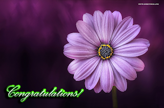 congratulations images wishes students flower greetings