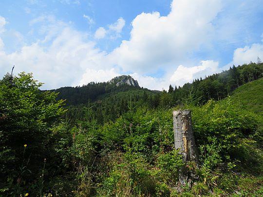 Widok na szczyt Havraniej Skały.