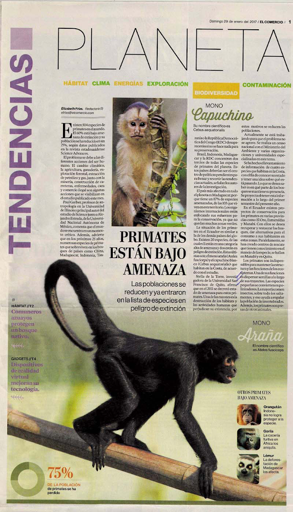 Primates están bajo amenaza. Stella de la Torre, Decana y catedrática del COCIBA
