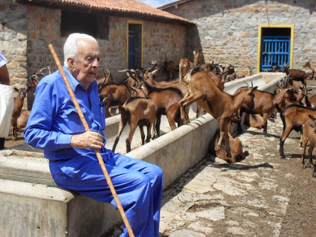 Resultado de imagem para Fazenda Carnaúba