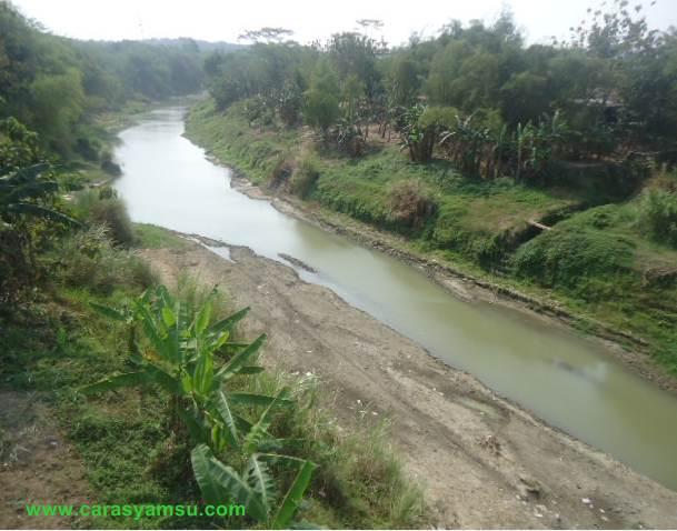 Sungai Luk Ulo