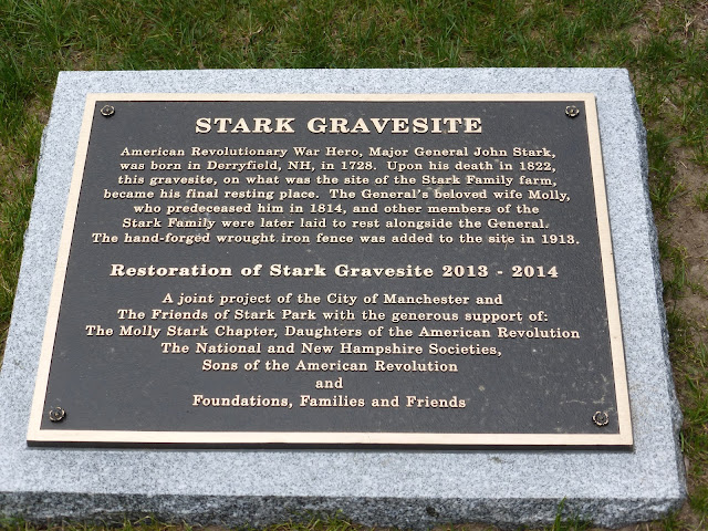 Green stark flag a newly planted maple tree and the general john stark