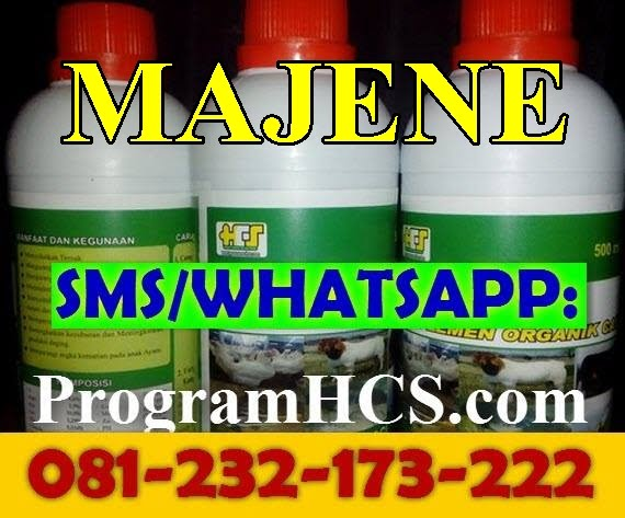 Jual SOC HCS Majene