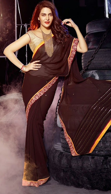 Maroon Georgette Designer Bollywood Saree With A Lovely Gold Blouse & Beautiful Pallu