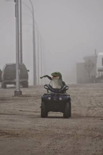 A frog was driving his ATV down the road when he saw the bear and waved.