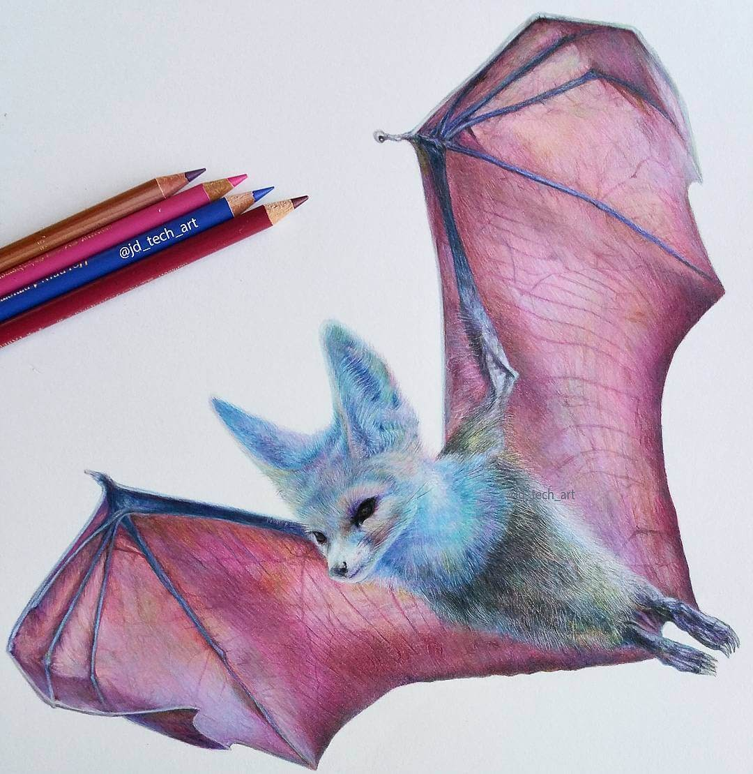 01-Fox-Bat-Joshua-Dansby-Fantasy-Animal-Combination-Drawings-www-designstack-co