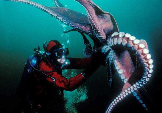 Lihat Foto-foto ini Tunjukan Betapa Mengerikannya Dunia Dasar Laut