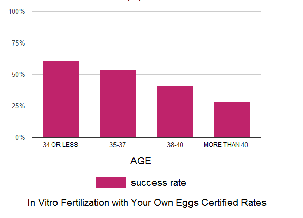 IVF with your own eggs and sperm from your partner