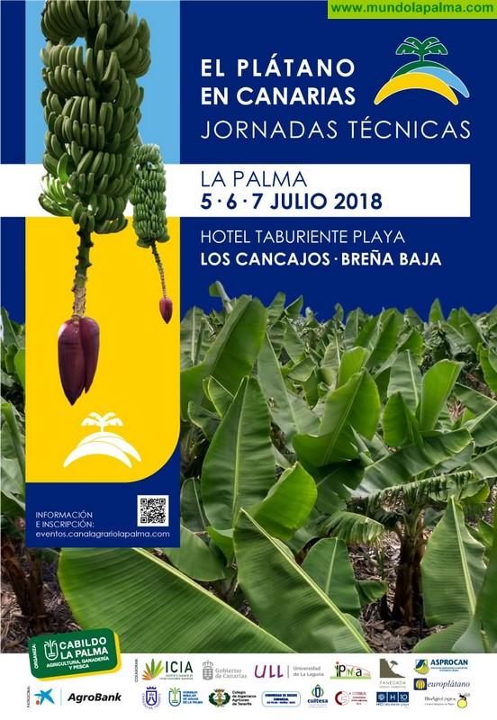 El Cabildo ultima los detalles de un encuentro regional de primer nivel dedicado a aspectos técnicos del cultivo del plátano