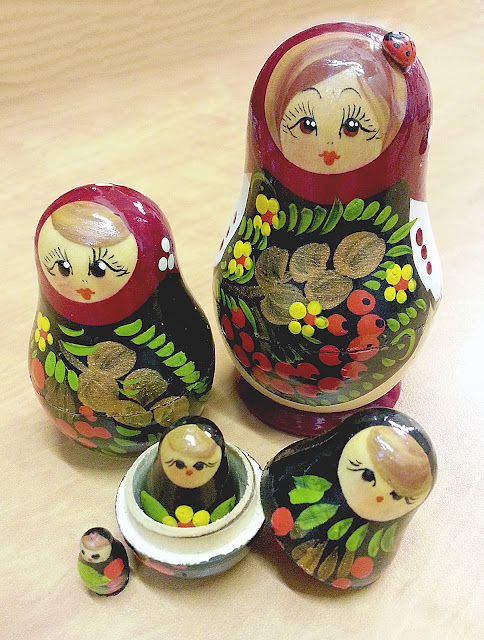 NAMC Montessori Zoology Advanced Classification matryoshka nesting dolls