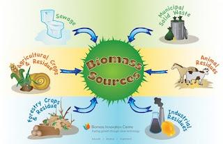 Energi Biomassa, Apa itu Energi Biomassa? Jenis dan Potensi Kerugian Menggunakan Energi Biomassa,Pengertian Energi Biomassa, Jenis dan Potensi Kerugian Menggunakan Energi Biomassa.