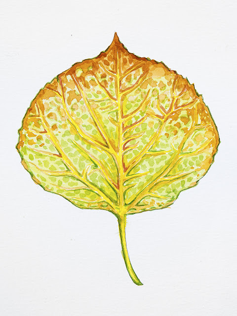 http://aaronspong.com/featured/aspen-leaf-green-and-orange-aaron-spong.html