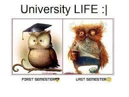 Quotes About University Life: University Life:
