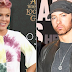 P!NK revela detalhes do seu novo single com Eminem