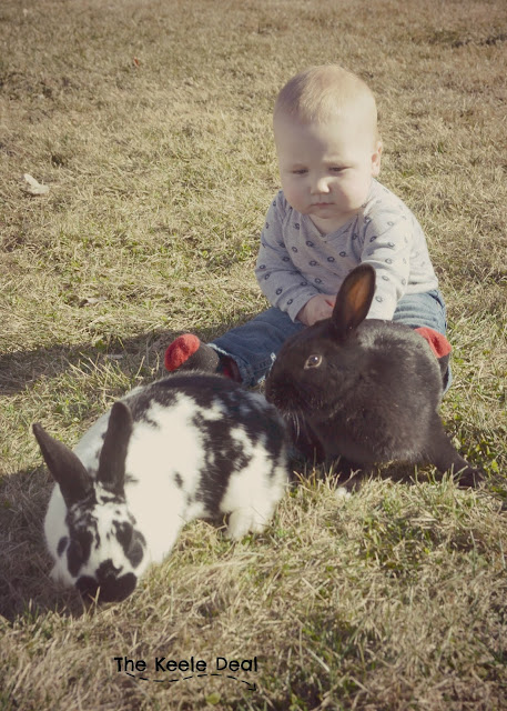 Baby and Bunny Easter Photo Shoot
