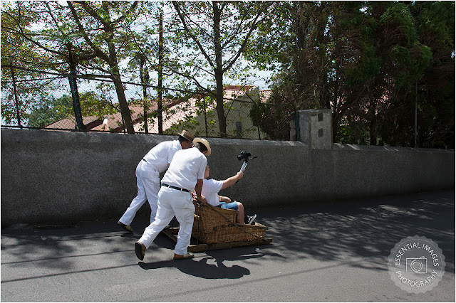 Basket toboggan ride in funchal