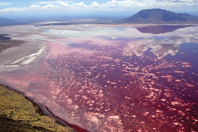 Lake, Natron, Tanzania