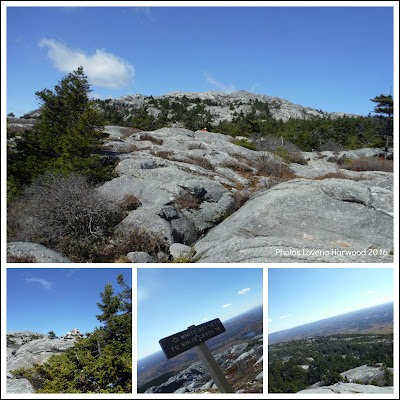 mt. monadnock, white cross trail, solo hiking, NH 52 with a view