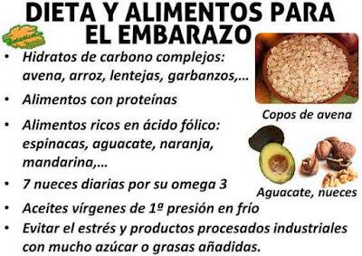 Blog de plantas el cido f lico s lamente es recomendable durante el embarazo - Alimentos que contengan hierro para embarazadas ...