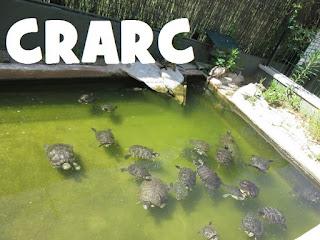 http://www.crarc-comam.net/