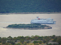 Promet putnika i vozila Jadrolinija trajekti slike otok Mrduja Brač Online