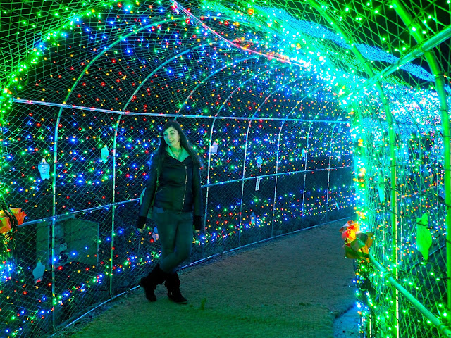 Posing for photos inside the light tunnel at the Light Festival at Boseong Green Tea Plantation, South Korea
