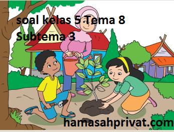 Kunci Jawaban Kelas 5 Tema 8 Guru Ilmu Sosial