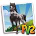 Fv 2 Black and White Knabstrupper Horse  (baby ,adult,prized)