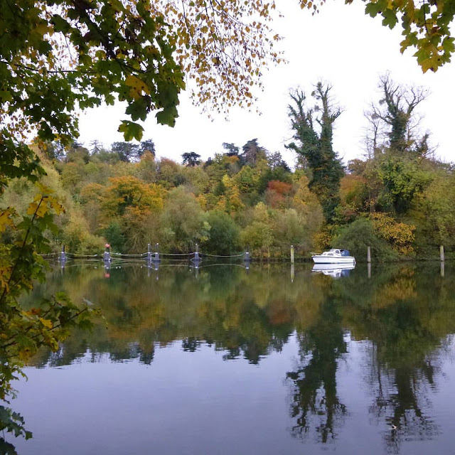 http://bugsandfishes.blogspot.co.uk/2015/11/an-autumn-walk-along-thames.html