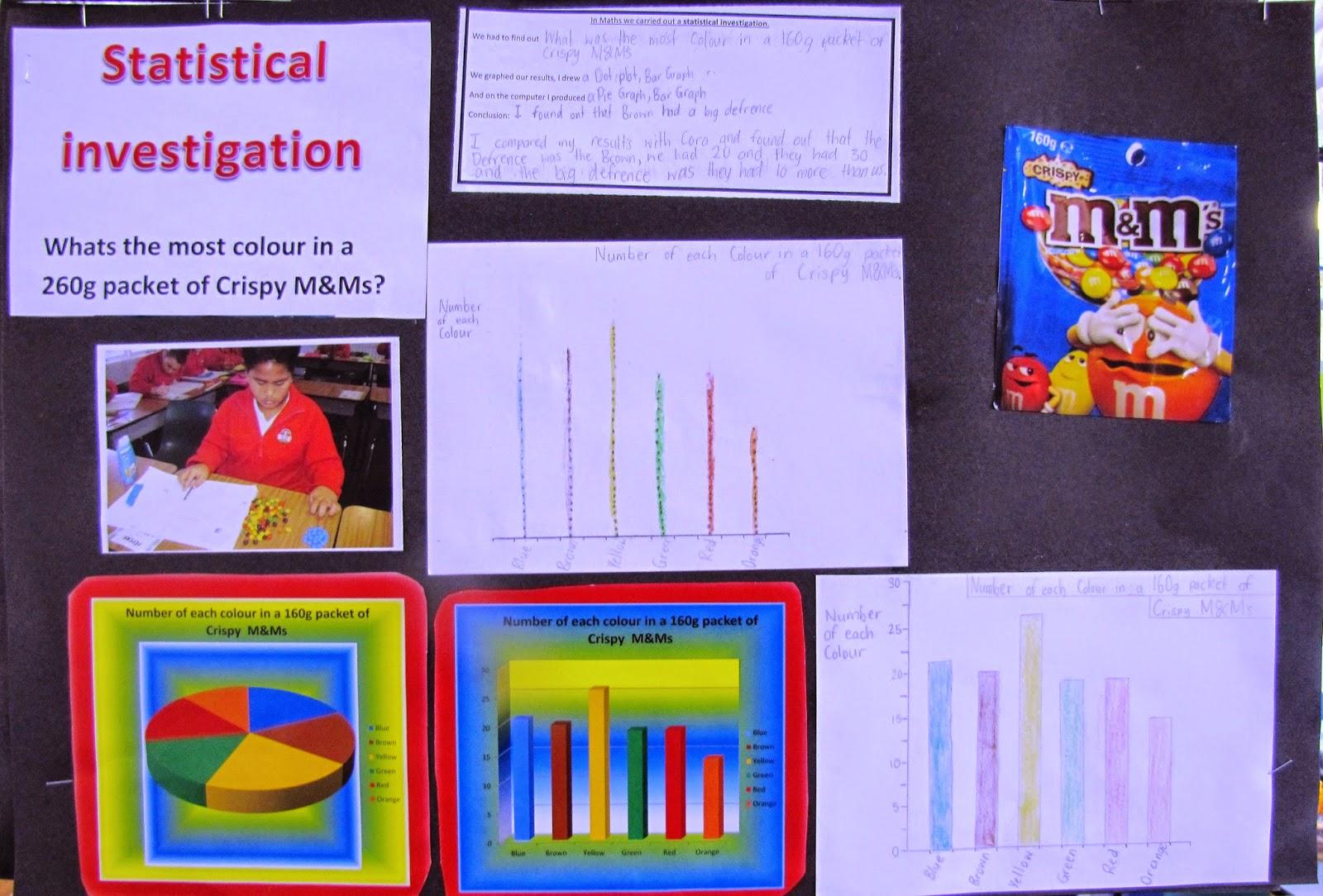 Room 10 Tokoroa Intermediate Statistical Investigations