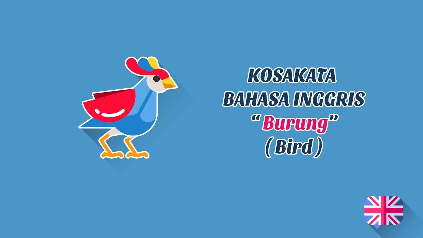 Jenis-Jenis Burung (Bird) + Pronunciation - Kosakata Bahasa Inggris