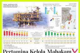Pertamina Manage Mahakam