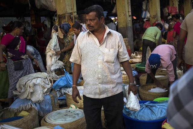 fish market, variety, quantiry, fish, sassoon docks, mumbai, india,
