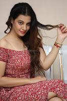 Diksha Panth in a Deep neck Short dress at Maya Mall pre release function ~ Celebrities Exclusive Galleries 048.JPG