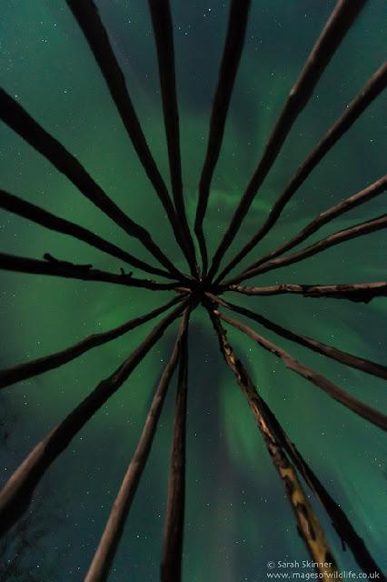 aurora boreal - circulo polar - casa de simi