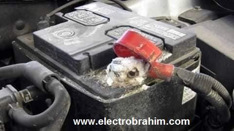 أفضل طريقة لتنظيف أقطاب البطارية من التأكسد