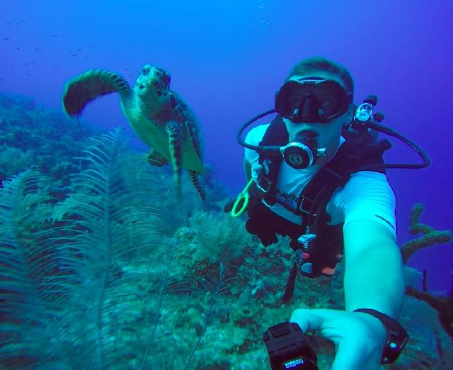 10 locais para mergulhar em Miami