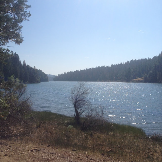 Jenkinson Lake at Sly Park at Pollock Pines