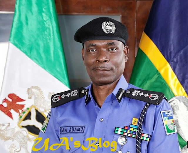 Ag. IGP Adamu Bans Unauthorized Covering Of Vehicle Number Plates