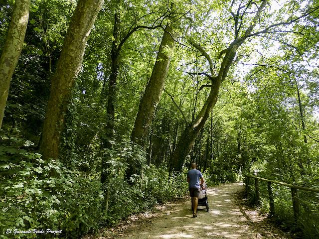 Via Verde de Arrazola, un sendero para todos los públicos por El Guisante Verde Project