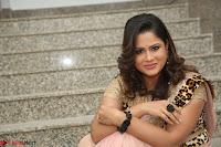 Shilpa Chakravarthy in Lovely Designer Pink Saree with Cat Print Pallu 042.JPG