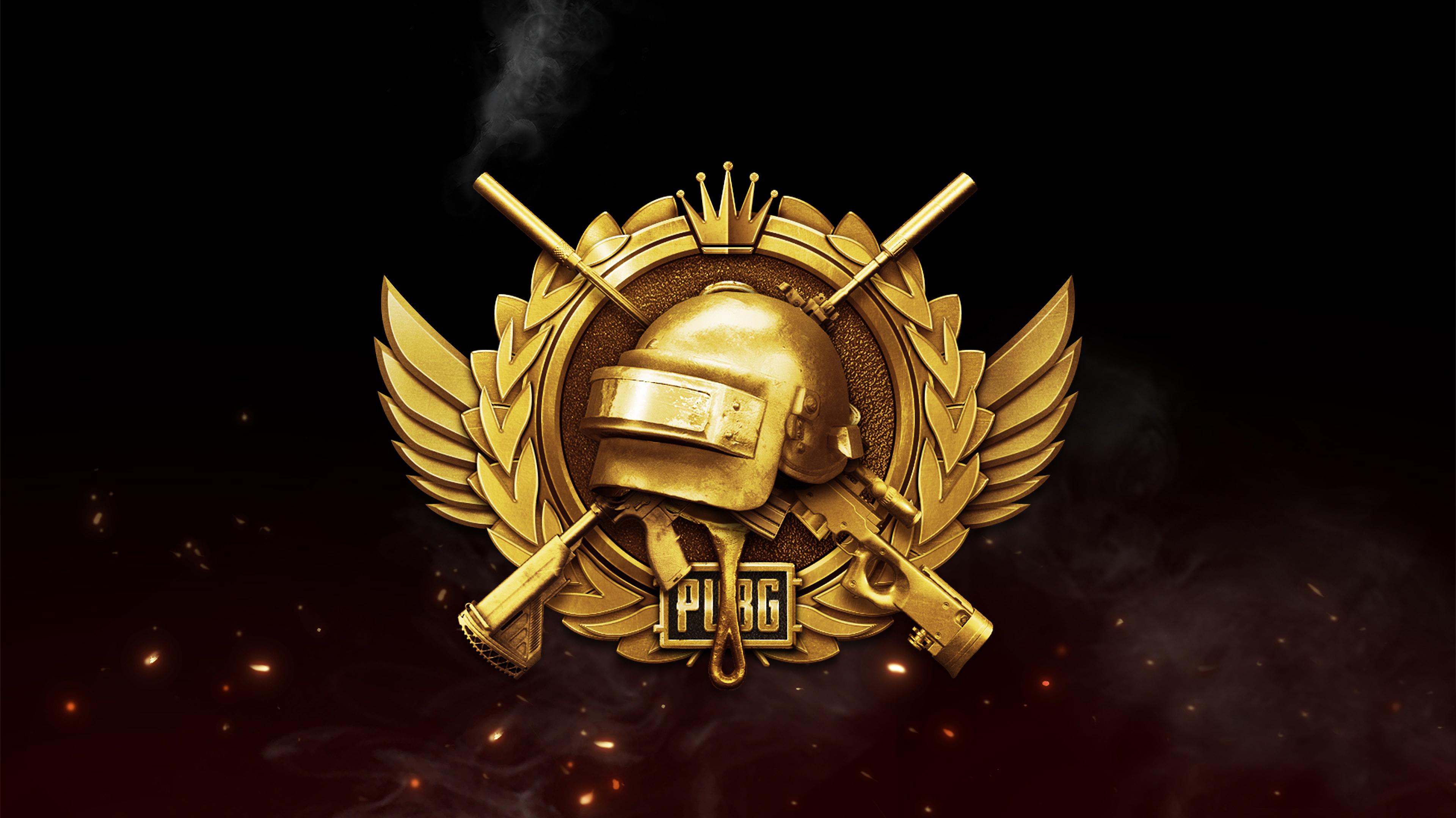 Pubg Lone Survivor Rank Logo Playerunknowns Battlegrounds