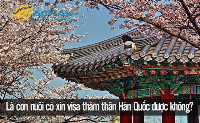 Là con nuôi có xin visa thăm thân Hàn Quốc được không?