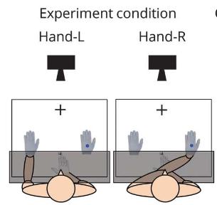 図:体促進効果の実験