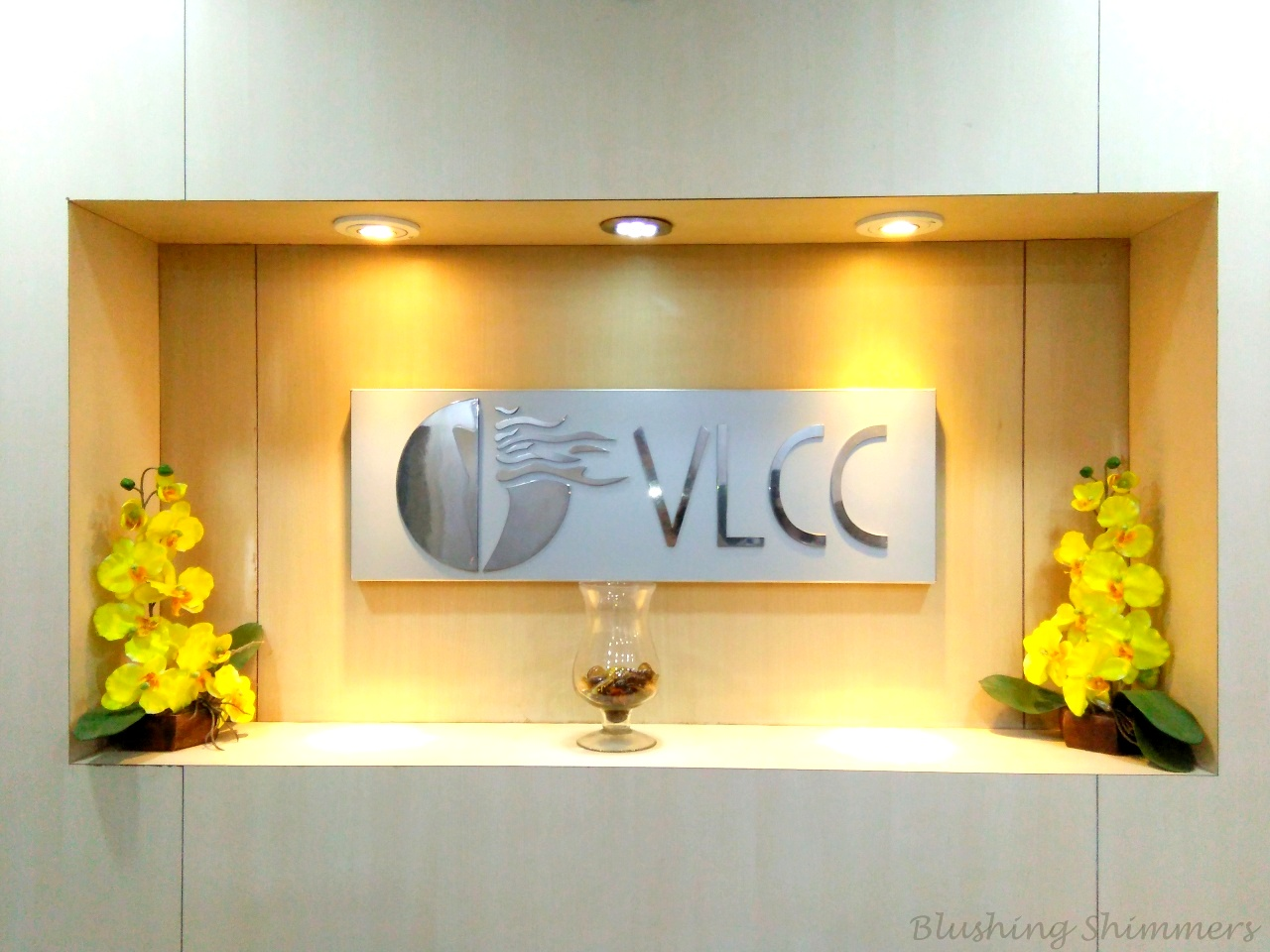 VLCC LUCKNOW REVIEW